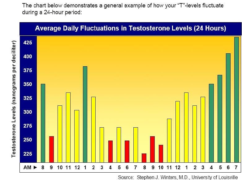 testosterone levels over 24 hour period