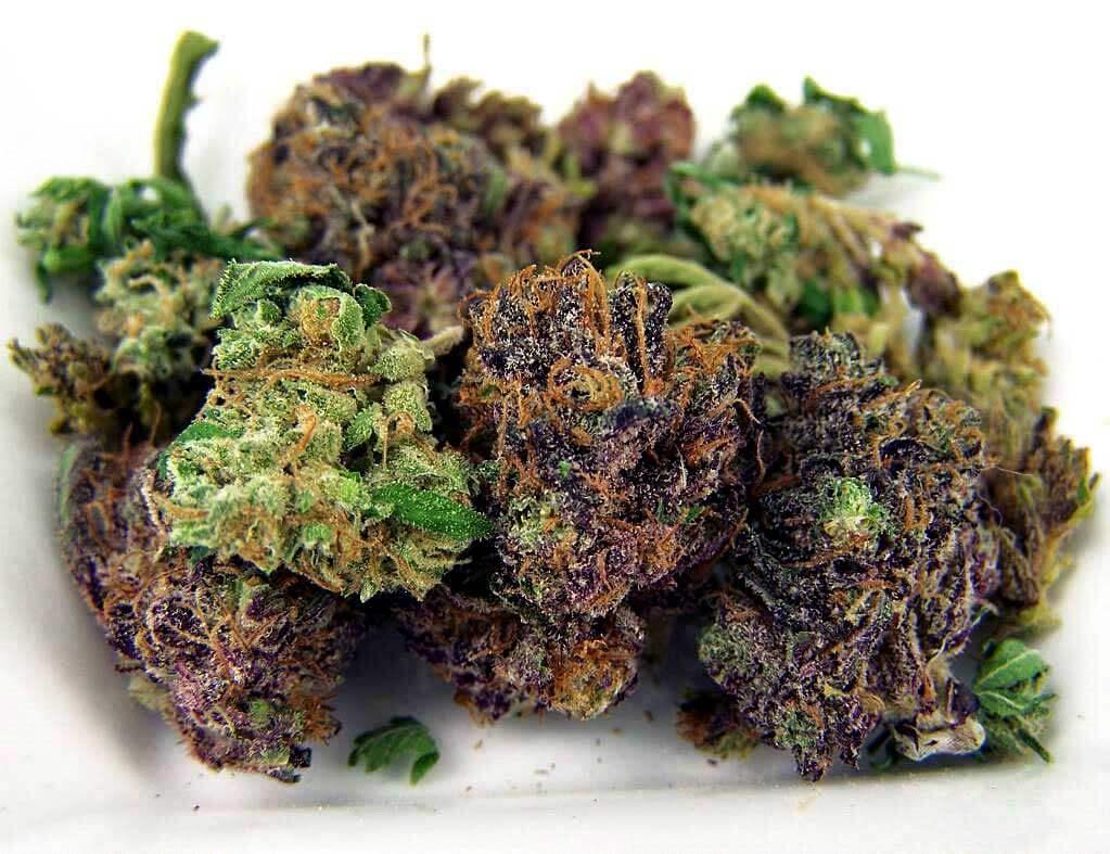 purple-green-cannabis-bud-weed (1)