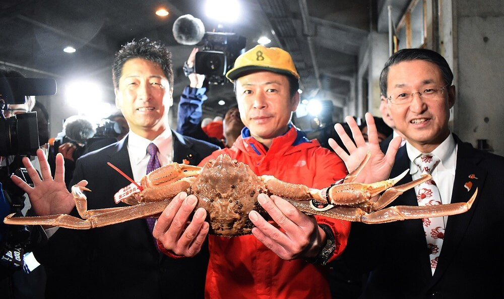 japan-snow-crab-fetches-record-46000-at-auction