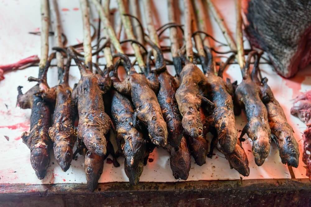 Roasted-Rats
